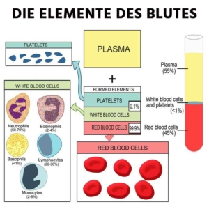 Elemente Blut