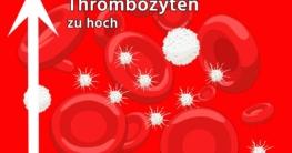 Thrombozyten zu hoch